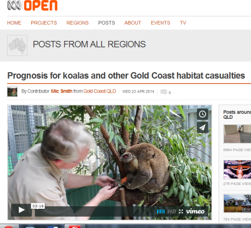Click on the screensaved image to go to Mic Smith's story on koala evictions on ABC Open