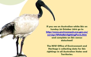 Gold Coast's Ibis Management Coordination Group (IMCG) and Ecosure have participated in the recent annual National Ibis Census.